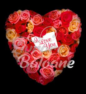 Balon Heart  Rose Garden Love 46 cm, Mexic